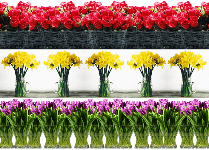 single types and colors of party flowers lined up
