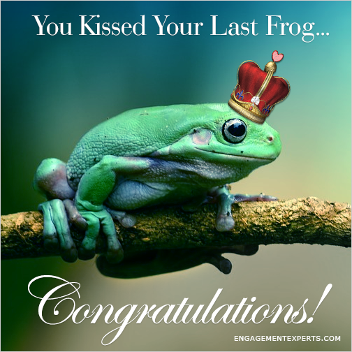 Prince frog with a crown sitting on a branch